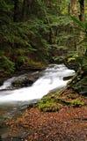 Wykoff Run, Pennsylvania - waterfall in early fall Royalty Free Stock Image