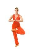 wykonywanie zrobić kobiety jogi Fotografia Stock