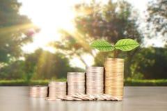 Wykres monet zapasu biznes i finanse Obrazy Royalty Free