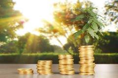 Wykres monet zapasu biznes i finanse Fotografia Royalty Free