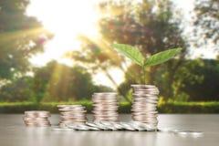 Wykres monet zapasu biznes i finanse Fotografia Stock