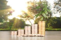 Wykres monet zapasu biznes i finanse Zdjęcia Royalty Free