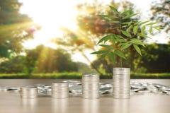 Wykres monet zapasu biznes i finanse Zdjęcie Stock