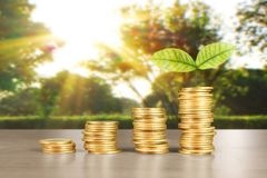 Wykres monet zapasu biznes i finanse Obraz Royalty Free