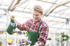 Wykwalifikowani młodego człowieka podlewania houseplants podczas gdy pracujący jako kwiaciarnia zdjęcia stock