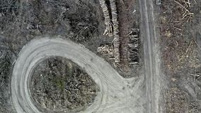 Wylesienie anteny fotografia Zniszczony las podczas zbierać zbiory wideo