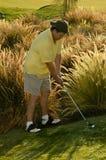 wymagający golfowy strzał Fotografia Royalty Free