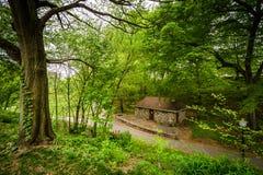 Wyman公园Dell看法,在巴尔的摩,马里兰 免版税库存照片