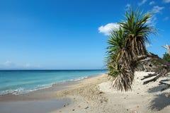 Wymarzona plaża, Bali Indonezja, Nusa Penida wyspa Zdjęcie Stock