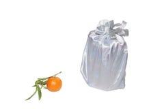 wymarzony tangerine Fotografia Stock