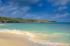Wymarzony wakacje, piękna biała piaskowata plaża w Karaiby, obrazy royalty free