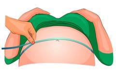 Wymiar podbrzusze kobieta w ciąży Obrazy Stock
