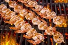 Wyśmienicie krewetki mierzeja na grillu Zdjęcie Royalty Free