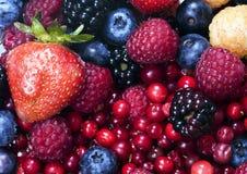 wymieszać owocna Zdjęcie Royalty Free