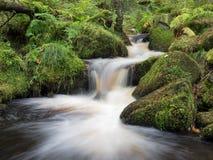 Wyming溪,高峰区,英国 库存图片