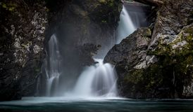 Wynoochee Spada W Olimpijskim lesie państwowym zdjęcie stock