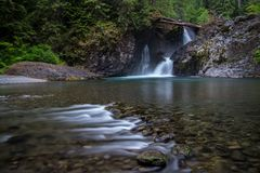 Wynoochee valt Olympisch Nationaal Bos stock foto's