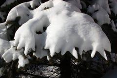 wyobraźni zima Obrazy Stock