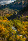 Wyoming Fall Colors Royalty Free Stock Photography