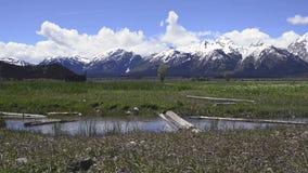 Wyoming. Grand Teton National Park. stock video
