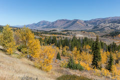 Wyoming Landscape in Fall Royalty Free Stock Photos
