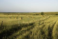 Wyoming Landscape Royalty Free Stock Photo