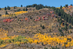 Wyoming Mountain Landscape in Fall Stock Photo