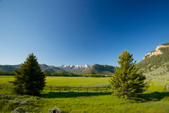 Wyoming Mountain Meadow Stock Photo