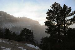 Wyoming Mountain Side Trees and Fog Royalty Free Stock Photography