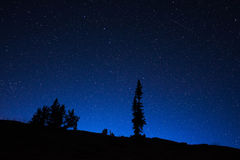 Wyoming Night Sky Royalty Free Stock Photos
