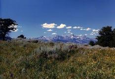Wyoming's Grand Tetons Royalty Free Stock Image