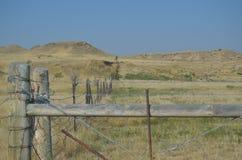 Wyoming staket Line 1 Arkivfoton