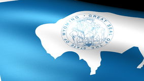 Wyoming State Flag Waving. Video footage stock footage