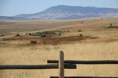 Wyoming-Wiese Stockfotos