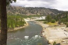 Wyoming Yellowstone nationalpark, flod i dalen royaltyfria foton