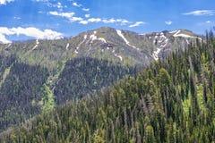 Wyoming zbocze góry w lecie zdjęcia royalty free