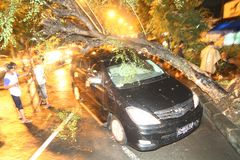 Wypadek samochodowy Zdjęcia Stock
