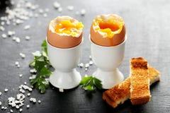 wyparzonych jajko zdjęcie royalty free