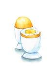 wyparzonych jajko Fotografia Stock