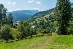 Wypasa z zielenią, soczystą trawą dla koni, krowami i innymi zwierzętami fechtującymi się, Fotografia Stock