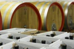 Wypełniać butelki w kartonach w podziemnym wino lochu Zdjęcia Royalty Free