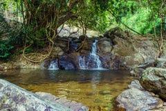 Wypięknia średnia siklawa i las wokoło kamieni przy Khao Yai parkiem narodowym - Nakhon Nayok prowincja, Tajlandia zdjęcie stock