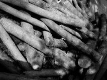 Wypiętrzający drewno Fotografia Stock