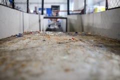 Wyposażenie dla przerobu klingerytu odpady w fabryce Zdjęcia Royalty Free