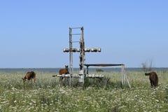 Wyposażenie szyb naftowy Obrazy Stock