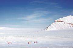 wyprawy pustkowia zima Fotografia Stock
