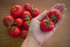 Wyprodukowany lokalnie organicznie pomidory Obrazy Royalty Free
