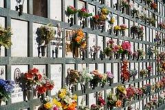Wyrównujący nagrobki w cmentarzu z różowymi tulipanami przed headstones Obraz Stock