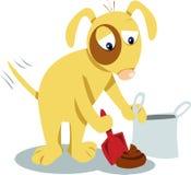 Wyrównywał psy zna ty musi czyścić ono! Obrazy Stock