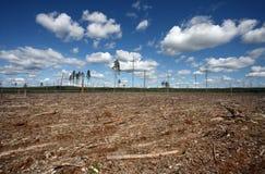 wyrębu lasów naturalnych zniszczenia obrazy stock